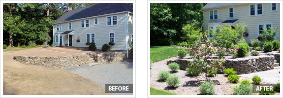 before and after photos of front yard landscaping